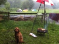 Ponycamp015
